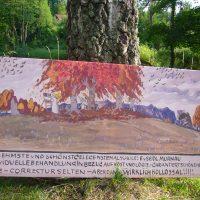 Bild 12, Galerie mit ID 634